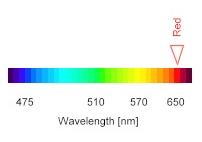 Lunghezze d'onda della luce visibile