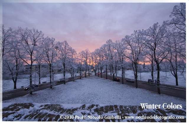 Winter Colors - ©2010 Paolo Niccolò Giubelli - www.occhiodelfotografo.com