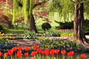 Parco di Sigurtà - (immagine del sito ufficiale del parco)