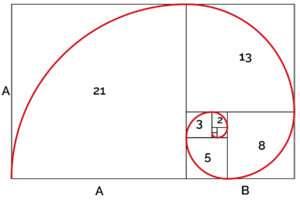 Spirale aurea e numeri di Fibonacci